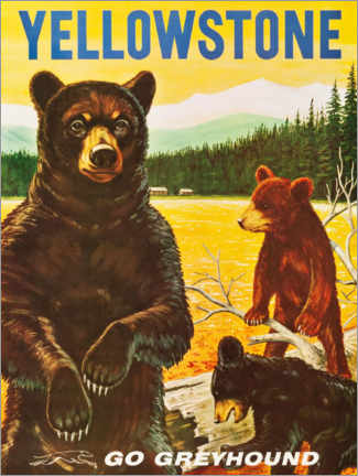 Poster  Parc national de Yellowstone - Travel Collection