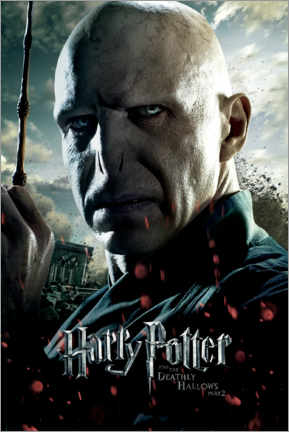 Tableau sur toile  The Deathly Hallows II - Voldemort