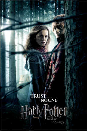 Sticker mural  The Deathly Hallows I - Hermione & Ron