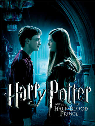 Tableau sur toile  The Half-Blood Prince - Harry & Ginny