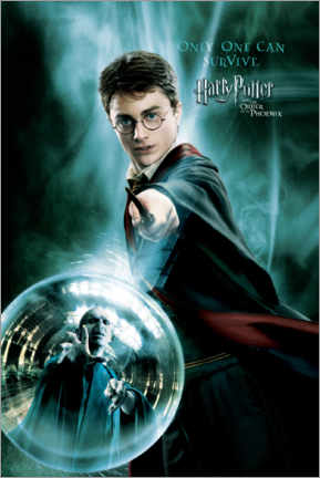 Poster  The Order of the Phoenix - Harry Potter