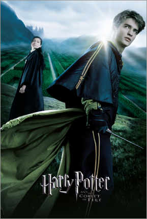Poster  The Goblet of Fire - Cedric & Cho Chang