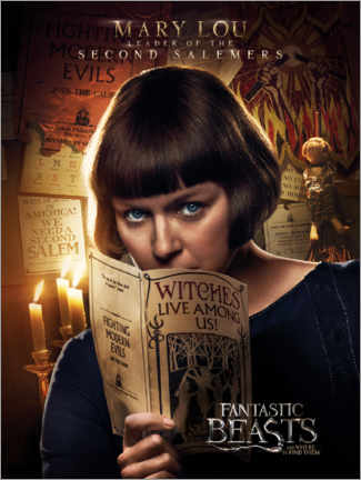 Poster  Fantastic Beasts and Where to Find Them - Mary Lou Barebone