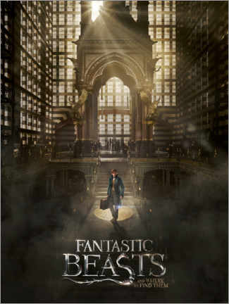 Tableau en plexi-alu  Fantastic Beasts and Where to Find Them - Newt