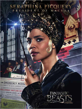 Tableau en PVC  Fantastic Beasts and Where to Find Them - Seraphina Picquery