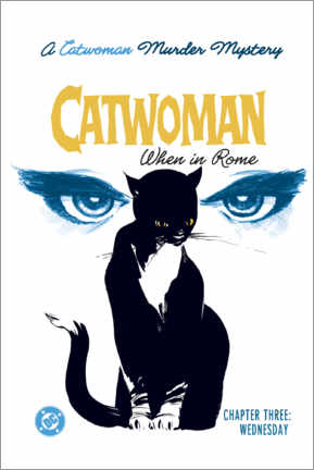 Poster  Catwoman Mystery