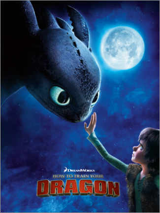 Tableau en aluminium  How to train your dragon