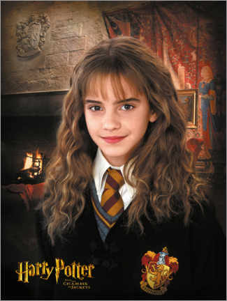 Poster  Hermione and the Chamber of Secrets