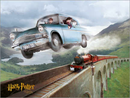 Poster  Harry and Ron - The Chamber of Secrets