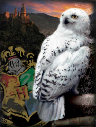 Poster  The Half-Blood Prince - Hedwig