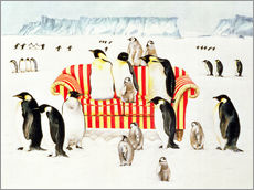 Tableau en plexi-alu  Penguins on a sofa - E.B. Watts