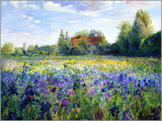 Sticker mural  Champ de fleurs au coucher du soleil - Timothy Easton
