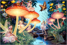 Tableau en plexi-alu  23979 Toadstool Brook Hidden Object - Steve Read