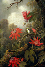 Sticker mural  Colibris et passiflores - Martin Johnson Heade