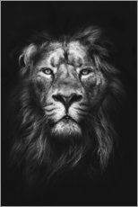 Poster  Lion - Art Couture