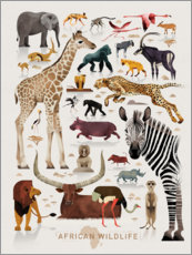 Poster  La faune africaine (anglais) - Dieter Braun