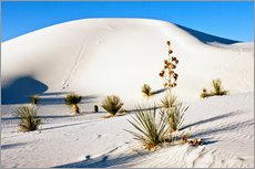 Tableau en plexi-alu  Dunes de White Sands - Bernard Friel