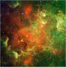 Sticker mural  Clusters of young stars