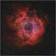 Tableau en plexi-alu  The Rosette Nebula - Rolf Geissinger