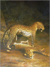 Tableau en plexi-alu  Two Leopards lying in the Exeter Exchange - Jacques Laurent Agasse