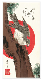 Poster  Falcon, Pine, and New Year Sunrise - Utagawa Hiroshige