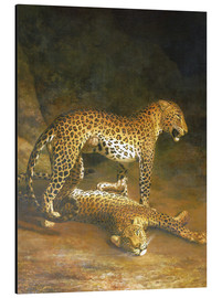 Tableau en aluminium  Two Leopards lying in the Exeter Exchange - Jacques Laurent Agasse