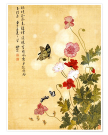 Poster  Coquelicots et papillons - Ma Yuanyu