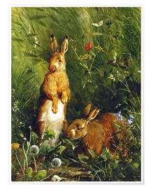 Poster  Rabbits in a meadow - Olaf August Hermansen
