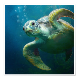 Poster  Bulle, la tortue marine - Photoplace Creative
