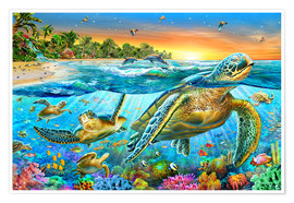 Poster  Tortues marines - Adrian Chesterman