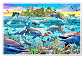 Poster  Dolphin Reef - Adrian Chesterman