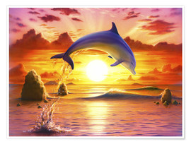 Poster  Day of the dolphin - sunset - Robin Koni