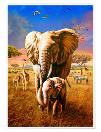 Poster  Elephants - Adrian Chesterman