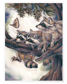 Poster  Raccoons and butterfly - Jody Bergsma