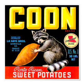Poster  Coon - Advertising Collection