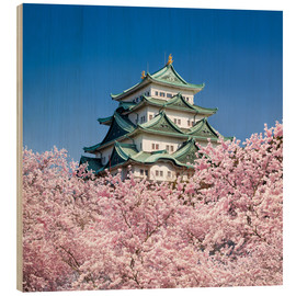 Tableau en bois  Nagoya castle with cherry blossom in spring - Jan Christopher Becke