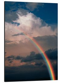 Tableau en aluminium  Rainbow - Phil Jude