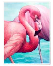 Poster  Flamant rose - Renate Berghaus