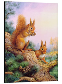 Tableau en aluminium  Pair of Red Squirrels on a Scottish Pine - Carl Donner