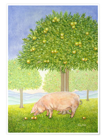 Poster  Orchard Pig - Ditz