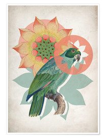 Poster  The happy lotus - Mandy Reinmuth