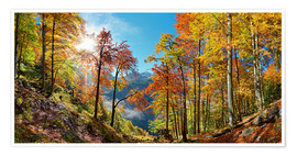 Poster Mountain forest in autumn