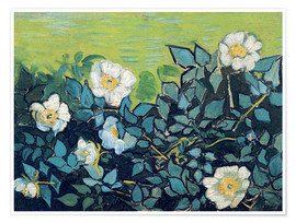 Poster  Roses sauvages - Vincent van Gogh