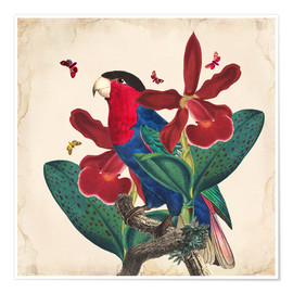 Poster  Oh My Parrot VII - Mandy Reinmuth
