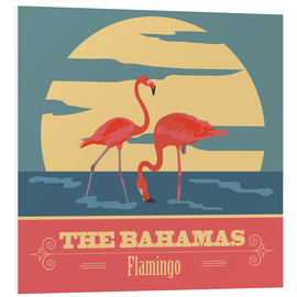 Tableau en PVC  The Bahamas - Flamants roses