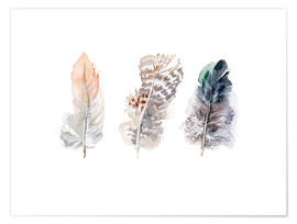 Poster  3 plumes - Verbrugge Watercolor