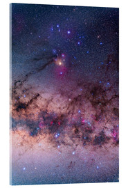 Tableau en verre acrylique  Scorpius with parts of Lupus and Ara regions of the southern Milky Way. - Alan Dyer