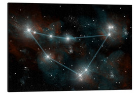 Tableau en aluminium  La constellation du Capricorne - Marc Ward