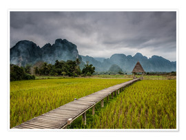 Poster way in paddy field 2