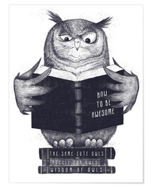 Poster Hibou en train de lire